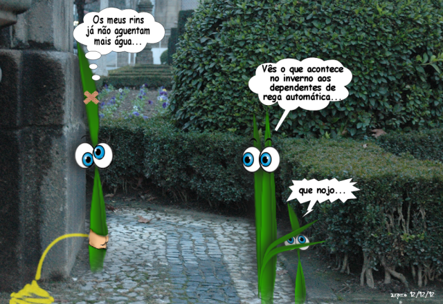 humor verde dez