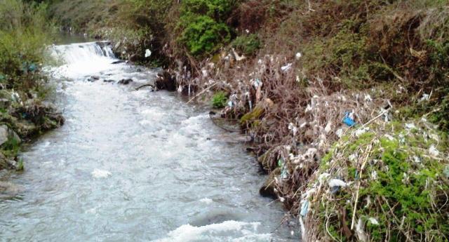 Rio Selho