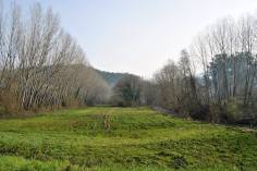 Campo perto do Rio Ferro, Jugueiros
