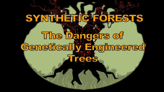syntheticforests-01